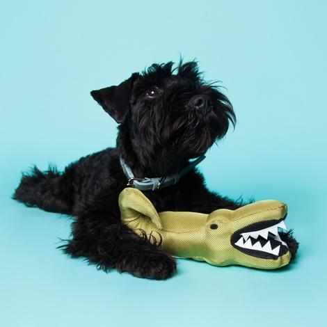 Aretha the Alligator Squeaky Plush Dog Toy 7