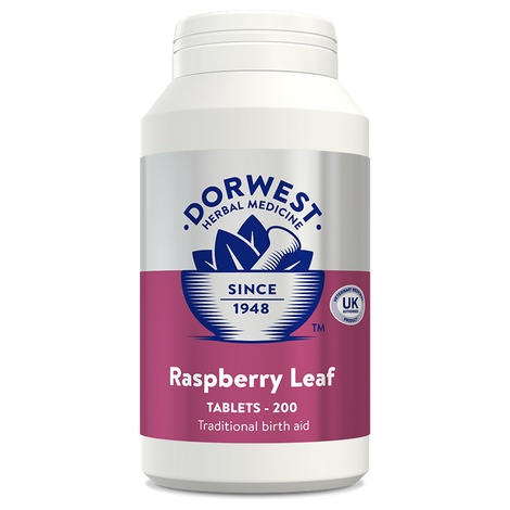 Raspberry Leaf Tablets for Dogs and Cats 2