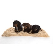 In Vogue Pets - Shaggy Pet Blanket - Camel