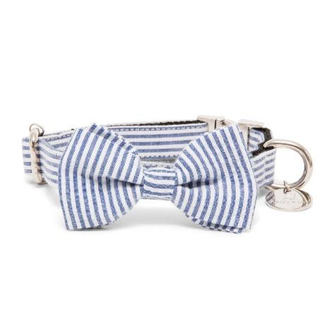 Bow Tie Collar - Chichester