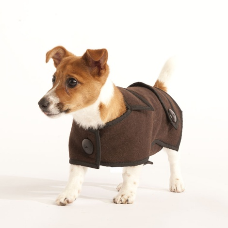Brown Wool Casual Dog Coat 2