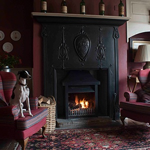 <strong>The White Swan Inn, Yorkshire </strong> A charming dog-friendly Inn, perfect for relaxing with Fido