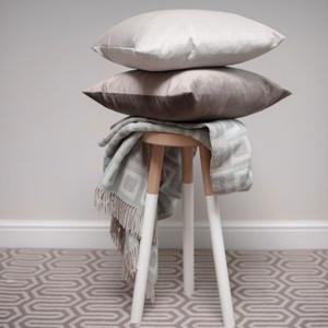 Velvet Scatter Cushion - Dove