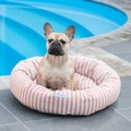 Orange Stripe Donut Dog Bed 4