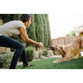 Scout & About Barbell Rope Dog Toy 6