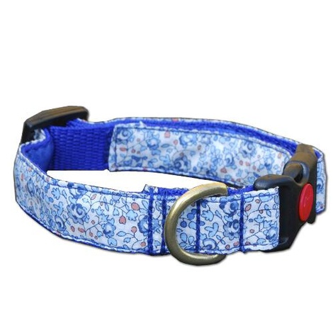 Standard Dog Collar with Lockable Clip