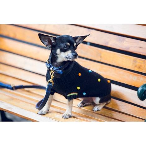 Pom Pom Cashmere Dog Sweater 2