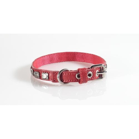 Fashion Dog Collar with Heart Studding in Brown 2