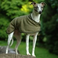 Tweed Whippet Coat 2