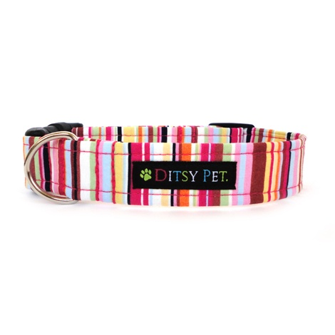 Padstow Dog Collar