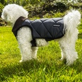 Chelsea Winter Warmer Dog Coat - Grey 3