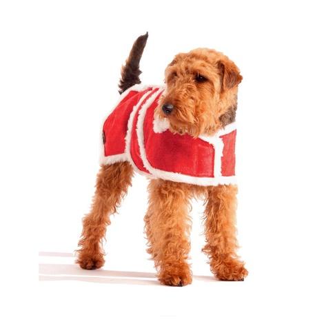 Christmas Special Woollen Dog Coat
