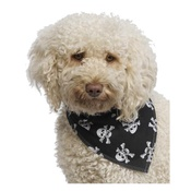 Pet Pooch Boutique - Dog Bandana - Black Skulls