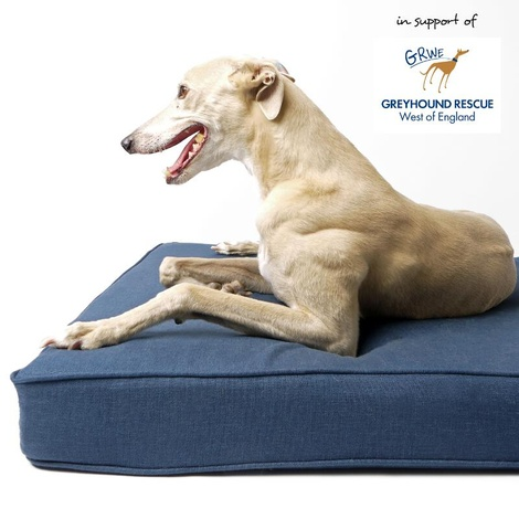 The GRWE Big Memory Foam Dog Bed - Navy