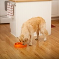 Coral Summer Orange Slow Feeder Dog Bowl 3
