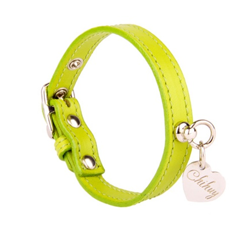 Green and Silver  Leather Collar