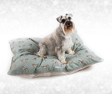 Christmas for Medium Dogs