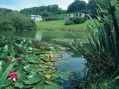 Lakeview, Cornwall, Liskeard