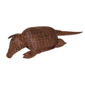 Albert the Armadillo