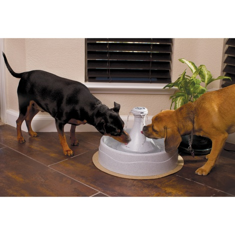 Drinkwell® 360 Plastic Pet Fountain 3