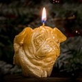 Winged Pug Candle - Gold 3