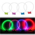 Lumitube Light Up Dog Collar - Green 3
