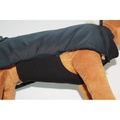 Standard Underbelly Dog Coat 2