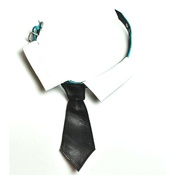 SR! Dog Accessories - Richard Nixon Dog Tie - Black Check