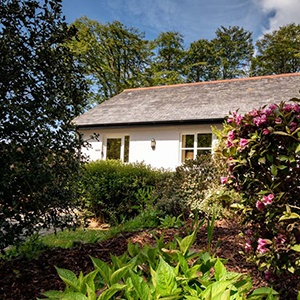 <strong>Tamar Valley Cottages, Cornwall </strong> A peaceful dog-friendly escape from everyday life