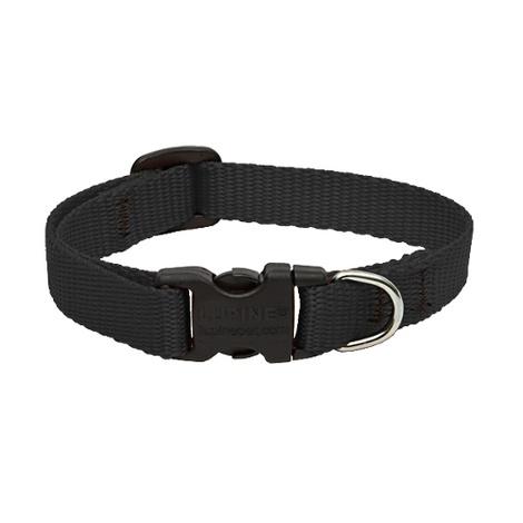"1/2"" Width Black Lupine Dog Collar"
