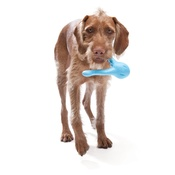 West Paw - Zogoflex® Tizzi Dog Toy – Aqua Blue