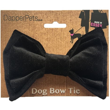 Black Velvet Dog Bow Tie 2
