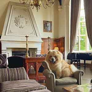 <strong>Danesfield House Hotel & Spa, Buckinghamshire.</strong> A delightful country retreat just over an hour's drive from London.