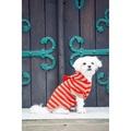 Pom Pom Cashmere Dog Hoodie 2