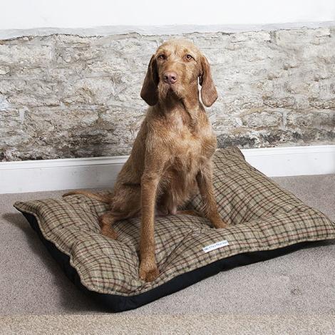 Weimaraner Tweed Cushion