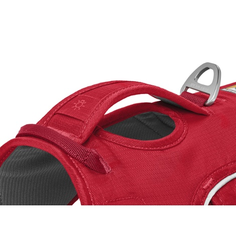 Web Master Harness - Red Currant 2