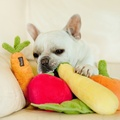 Plush Dog Toy - Zucchini 4