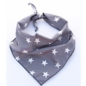 Pet Pooch Boutique - Grey Star Dog Bandana