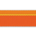 Flat Out Leash - Orange Sunset 2