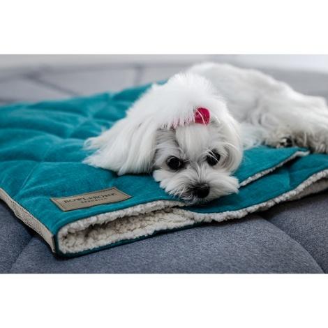 Mint Dog Sleeping Bag 2