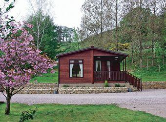 Holly's Lodge