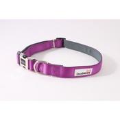 Doodlebone - Bold Padded Collar - Purple
