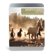 Gift Republic - Adopt A Horse Gift Box