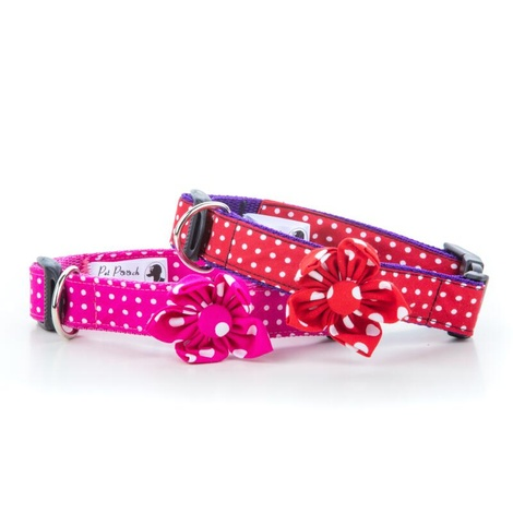 Red Polka Dot Collar with Flower Accessory 2