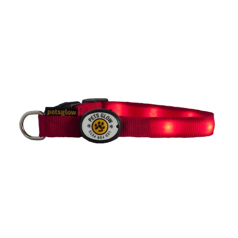 Outshined LED Dog Collar Red