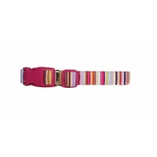Arton & Co - Candy Stripe Dog Collar