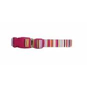 Arton & Co - Candy Stripe Dog Collar