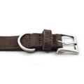 Nubuck dog collar - Bergamo 6