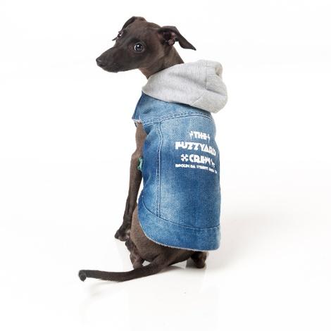 Crew Denim Dog Hoodie 3