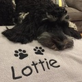 Personalised Fleece Blanket - Light Grey 2